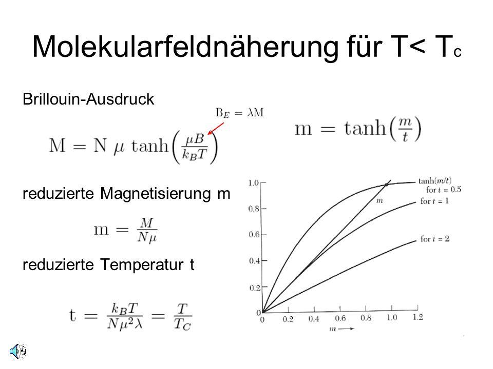Brillouin-Ausdruck reduzierte Magnetisierung m reduzierte Temperatur t Molekularfeldnäherung für T< T c