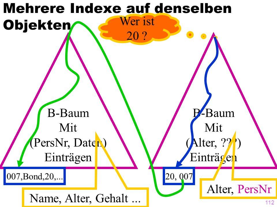 112 Mehrere Indexe auf denselben Objekten B-Baum Mit (PersNr, Daten) Einträgen Name, Alter, Gehalt... B-Baum Mit (Alter, ???) Einträgen Alter, PersNr