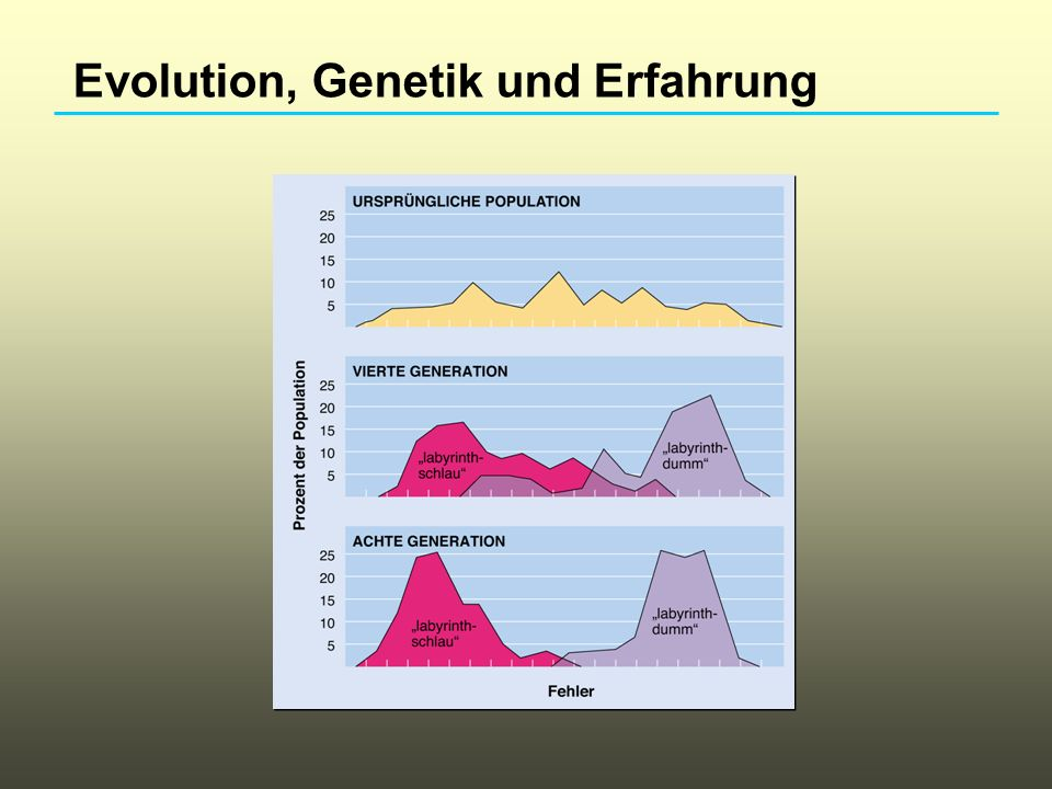 Evolution, Genetik und Erfahrung
