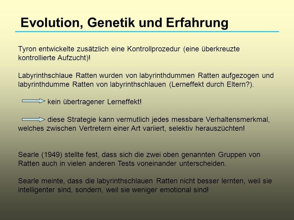 Evolution, Genetik und Erfahrung Gene beeinflussen die Entwicklung von Verhalten.