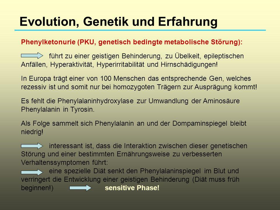 Phenylketonurie (PKU, genetisch bedingte metabolische Störung): führt zu einer geistigen Behinderung, zu Übelkeit, epileptischen Anfällen, Hyperaktivi