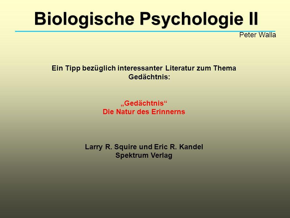 Biologische Psychologie II Peter Walla Ein Tipp bezüglich interessanter Literatur zum Thema Gedächtnis: Gedächtnis Die Natur des Erinnerns Larry R.