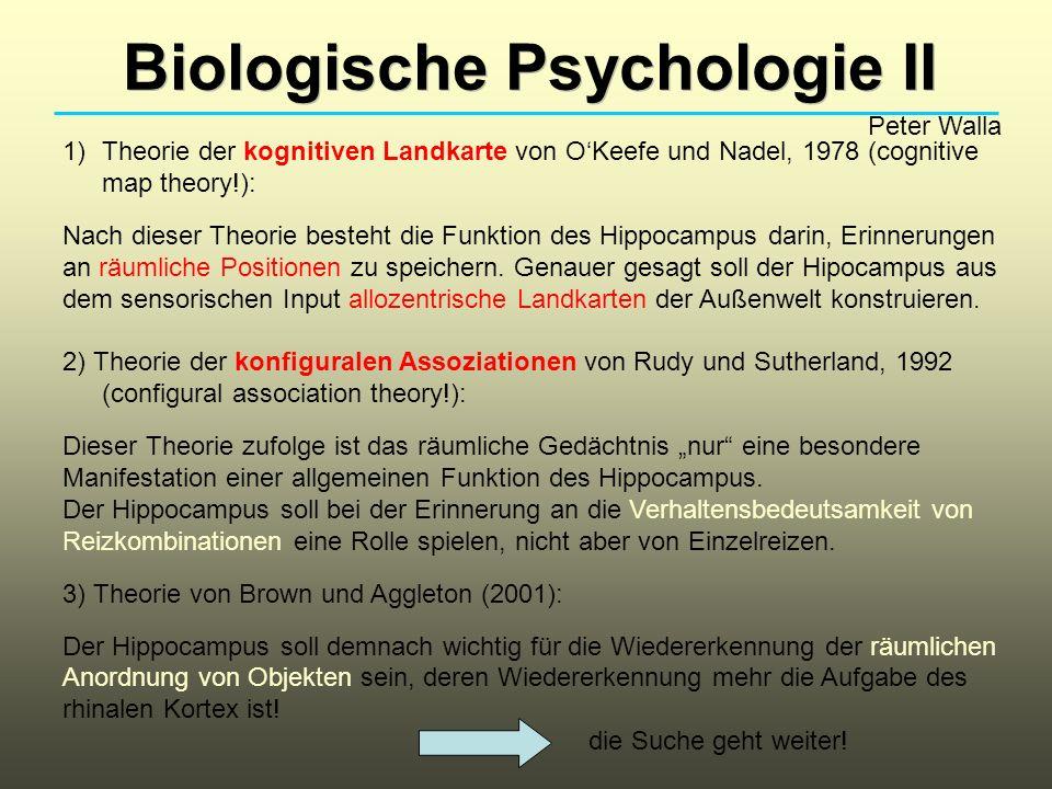 Biologische Psychologie II Peter Walla 1)Theorie der kognitiven Landkarte von OKeefe und Nadel, 1978 (cognitive map theory!): Nach dieser Theorie besteht die Funktion des Hippocampus darin, Erinnerungen an räumliche Positionen zu speichern.