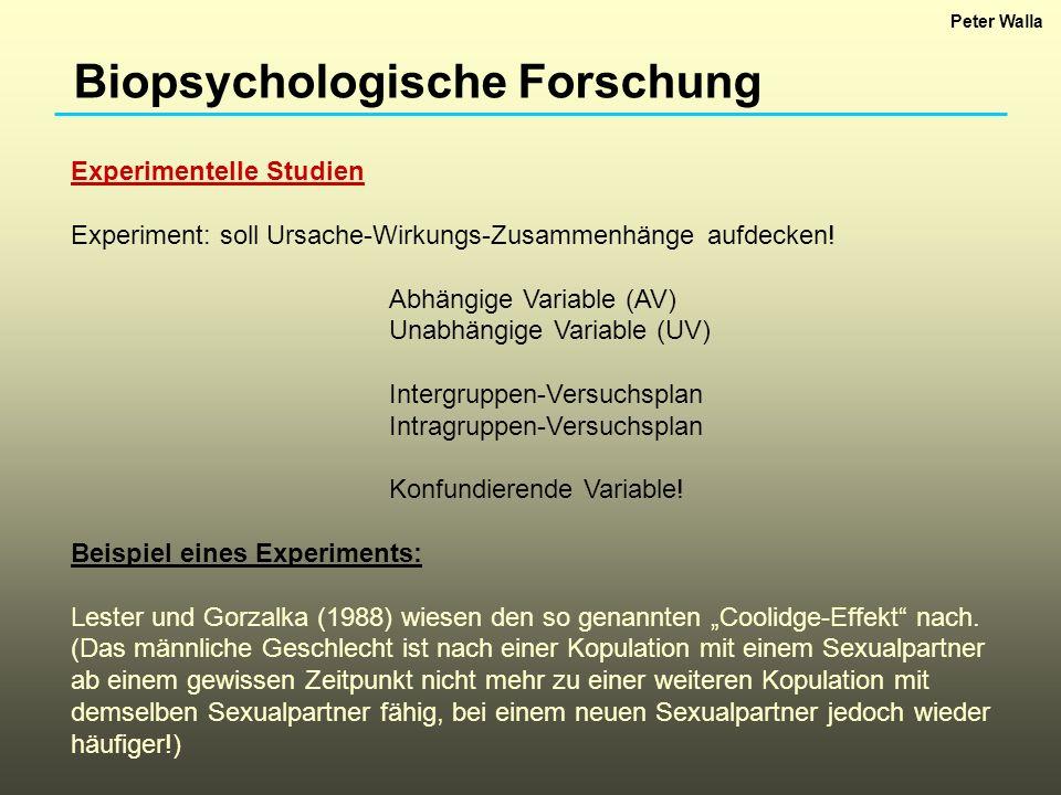 Biopsychologische Forschung Experimentelle Studien Experiment: soll Ursache-Wirkungs-Zusammenhänge aufdecken! Abhängige Variable (AV) Unabhängige Vari