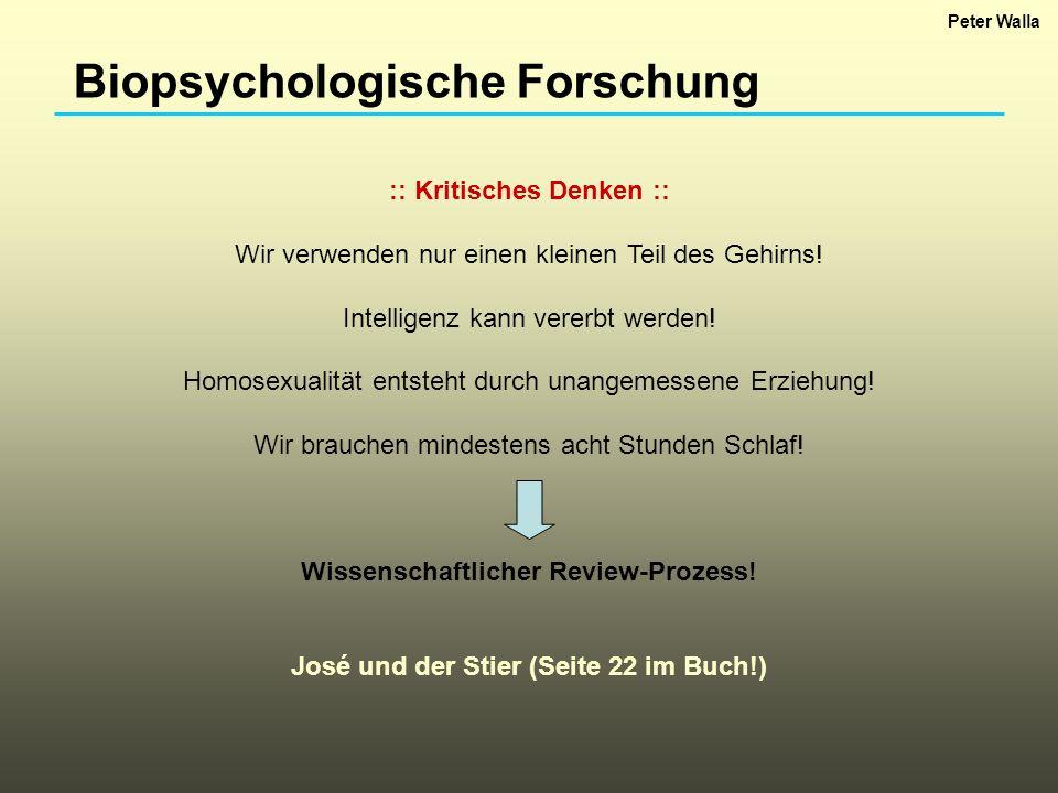 Biopsychologische Forschung :: Kritisches Denken :: Wir verwenden nur einen kleinen Teil des Gehirns! Intelligenz kann vererbt werden! Homosexualität