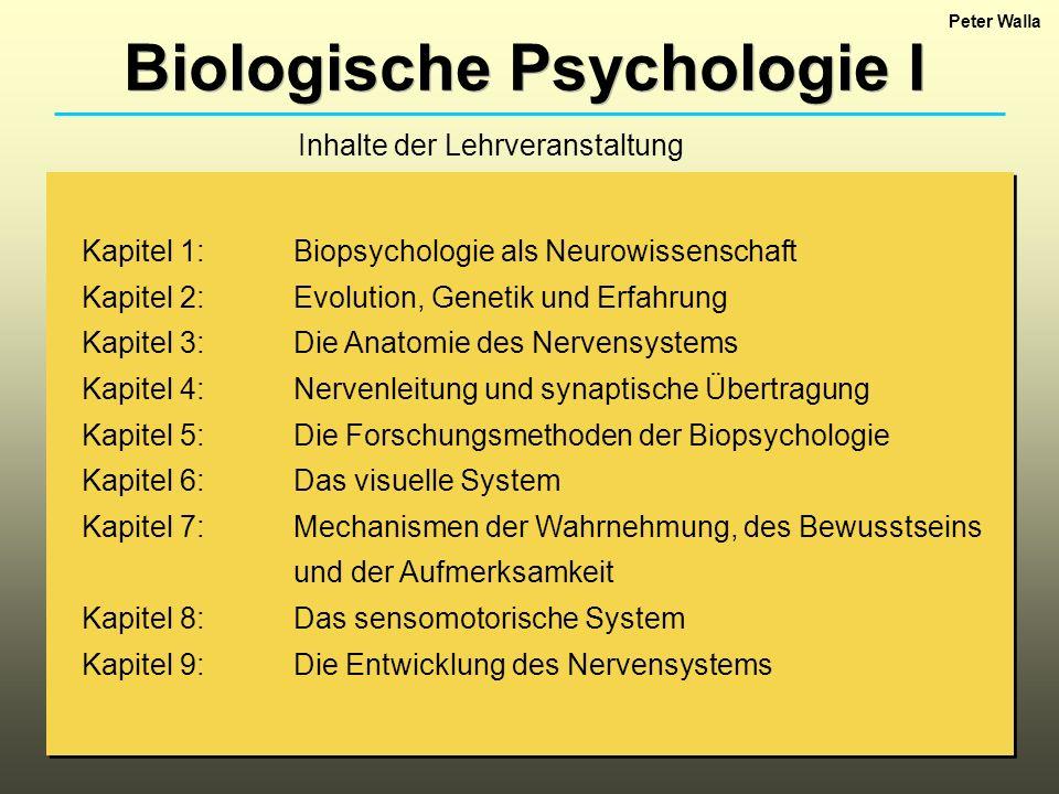 Biologische Psychologie I Kapitel 1: Biopsychologie als Neurowissenschaft Kapitel 2: Evolution, Genetik und Erfahrung Kapitel 3: Die Anatomie des Nerv