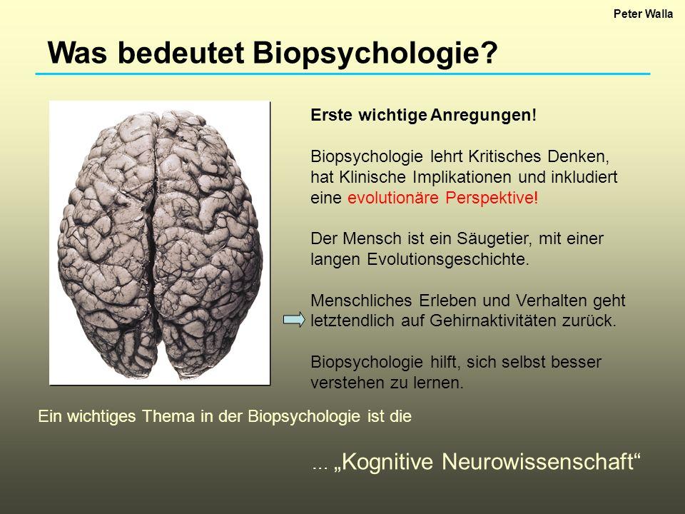 Was bedeutet Biopsychologie? Erste wichtige Anregungen! Biopsychologie lehrt Kritisches Denken, hat Klinische Implikationen und inkludiert eine evolut