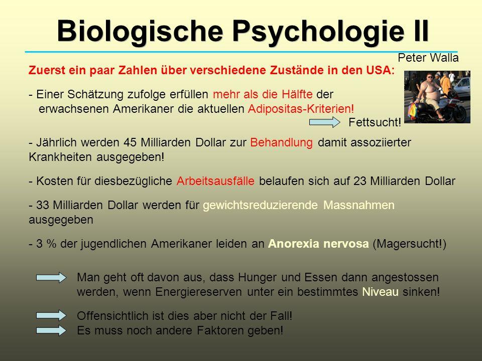 Biologische Psychologie II Peter Walla Zuerst ein paar Zahlen über verschiedene Zustände in den USA: - Einer Schätzung zufolge erfüllen mehr als die H