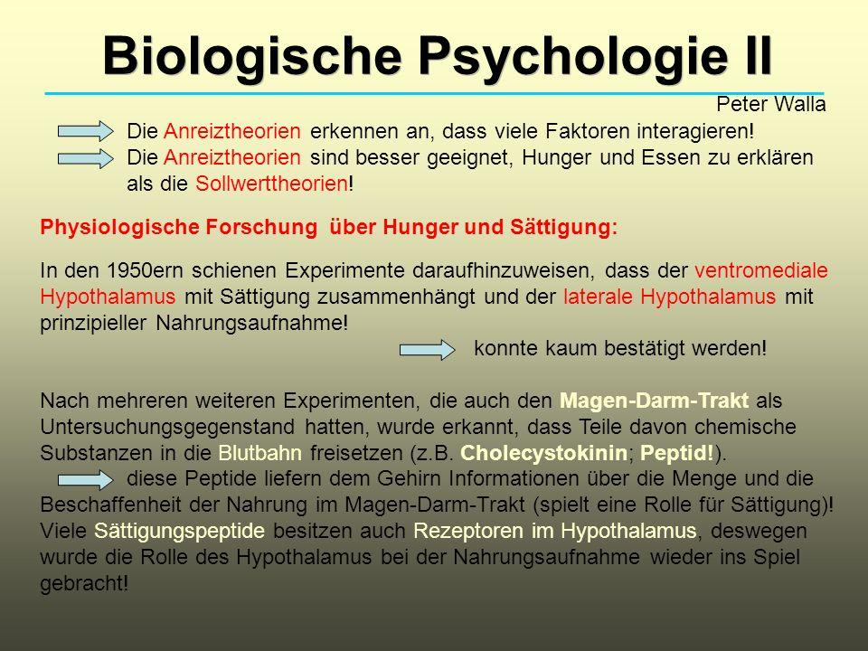 Biologische Psychologie II Peter Walla Die Anreiztheorien erkennen an, dass viele Faktoren interagieren! Die Anreiztheorien sind besser geeignet, Hung