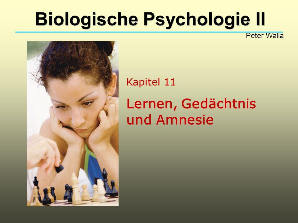 Biologische Psychologie II Peter Walla Gerne schliessen wir daraus, dass die Konsolidierungsidee von Herrn Hebb für bestimmte Gedächtnisinhalte ausreichend erklärend ist, während andere Inhalte vermutlich durch andere Konsolidierungsprozesse langfristig gespeichert werden!