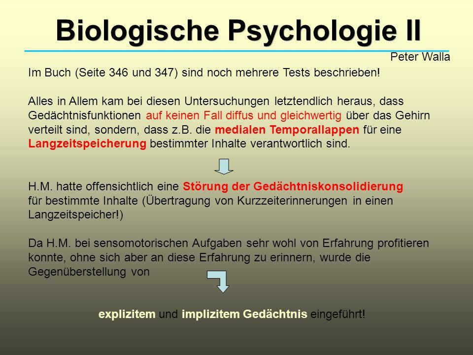 Biologische Psychologie II Peter Walla Es stellte sich im Folgenden heraus, dass ein solches amnestisches Bild bei mehreren anderen Patienten ebenso auftrat.