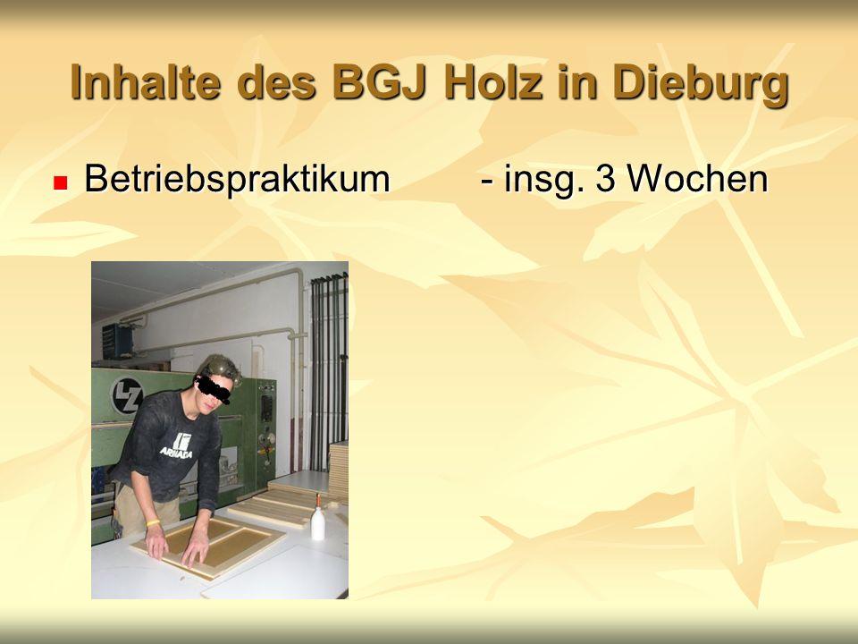 Inhalte des BGJ Holz in Dieburg Betriebspraktikum- insg. 3 Wochen Betriebspraktikum- insg. 3 Wochen