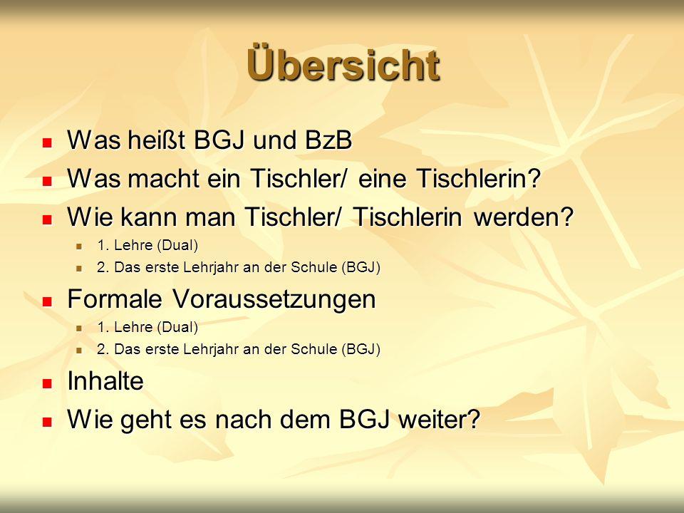 Übersicht Was heißt BGJ und BzB Was heißt BGJ und BzB Was macht ein Tischler/ eine Tischlerin? Was macht ein Tischler/ eine Tischlerin? Wie kann man T