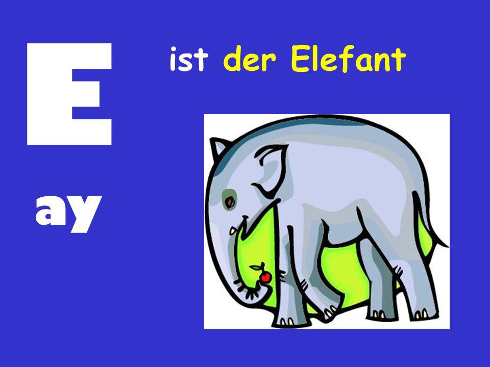 E ay ist der Elefant