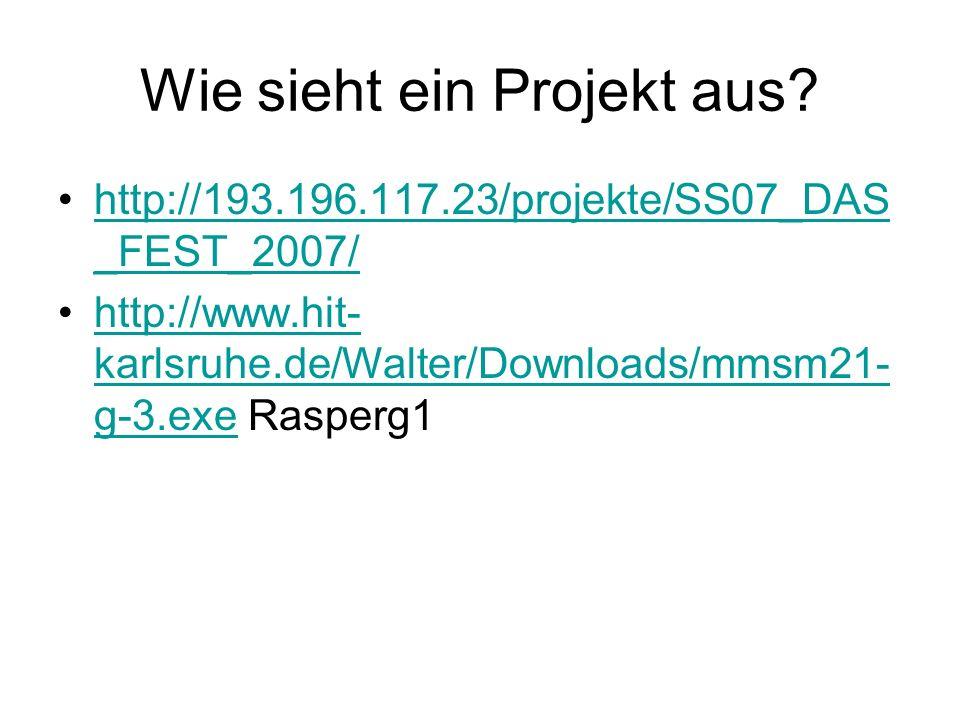Wie sieht ein Projekt aus? http://193.196.117.23/projekte/SS07_DAS _FEST_2007/http://193.196.117.23/projekte/SS07_DAS _FEST_2007/ http://www.hit- karl