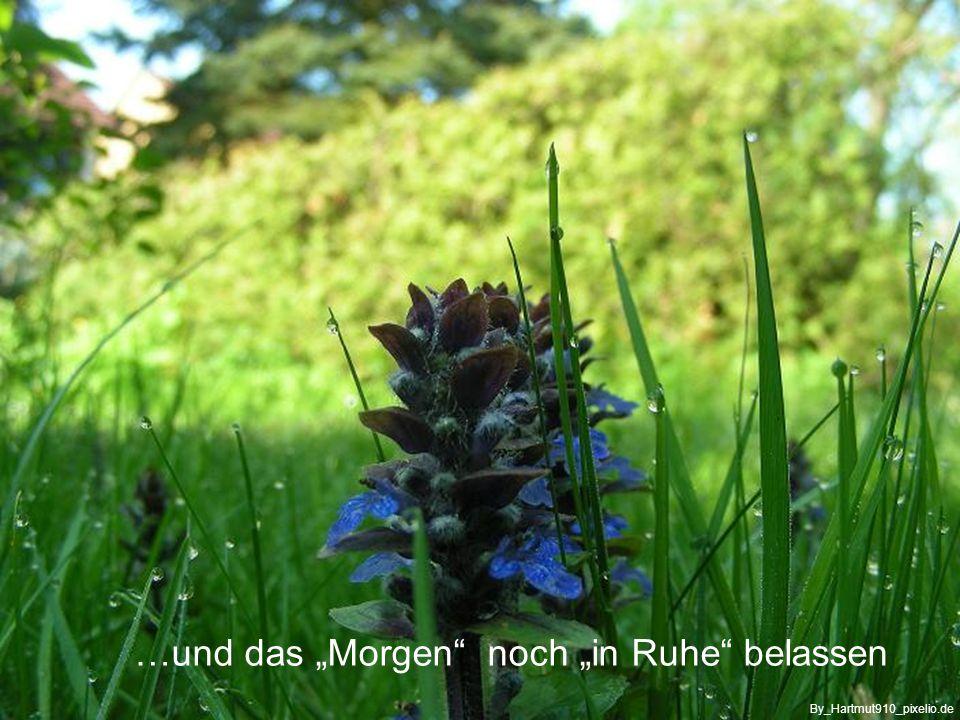 …nicht auf Vergangenes schauen By_www.filastockphoto.com_pixelio.de