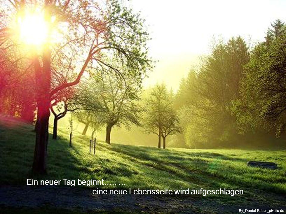 …und das Morgen noch in Ruhe belassen By_Hartmut910_pixelio.de