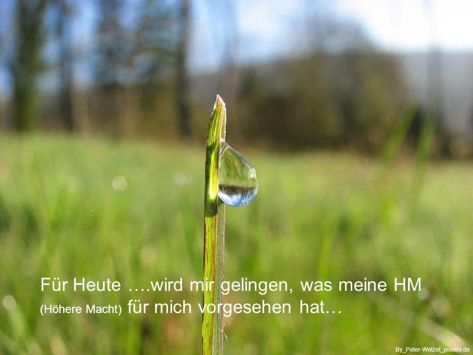 …was er wohl bringen mag By_Katharina-Ferdi_pixelio.de