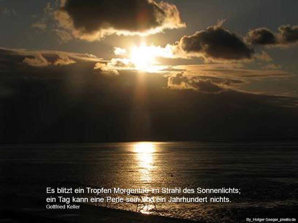 ……der Beginn eines neuen Tages hat seinen besonderen Reiz By_Dieter_pixelio.de
