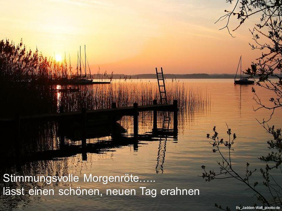….. regt sich am Weiher schon erstes Leben By_fürdenaugenblick_pixelio.de