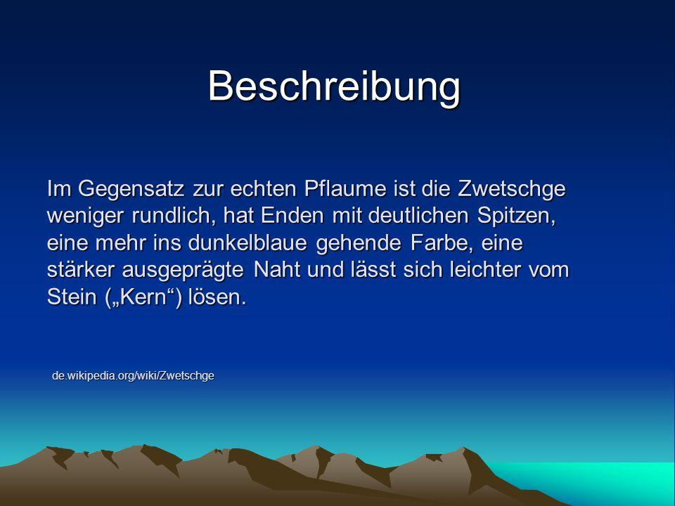 Blätter www.restena.lu/.../zwetschge.jpg