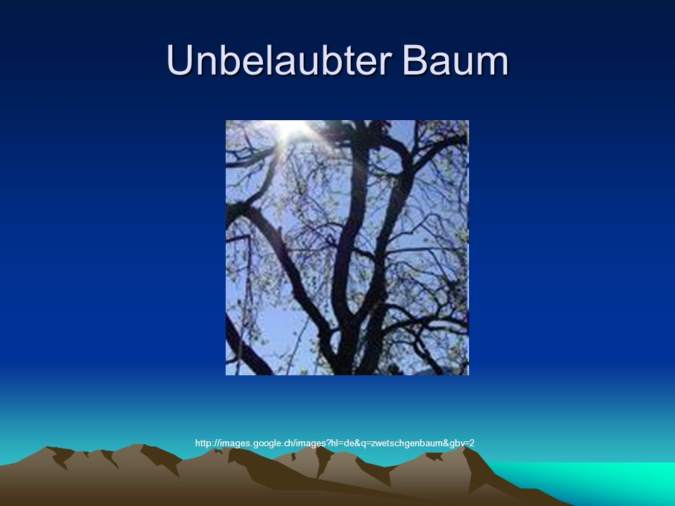 Unbelaubter Baum http://images.google.ch/images?hl=de&q=zwetschgenbaum&gbv=2