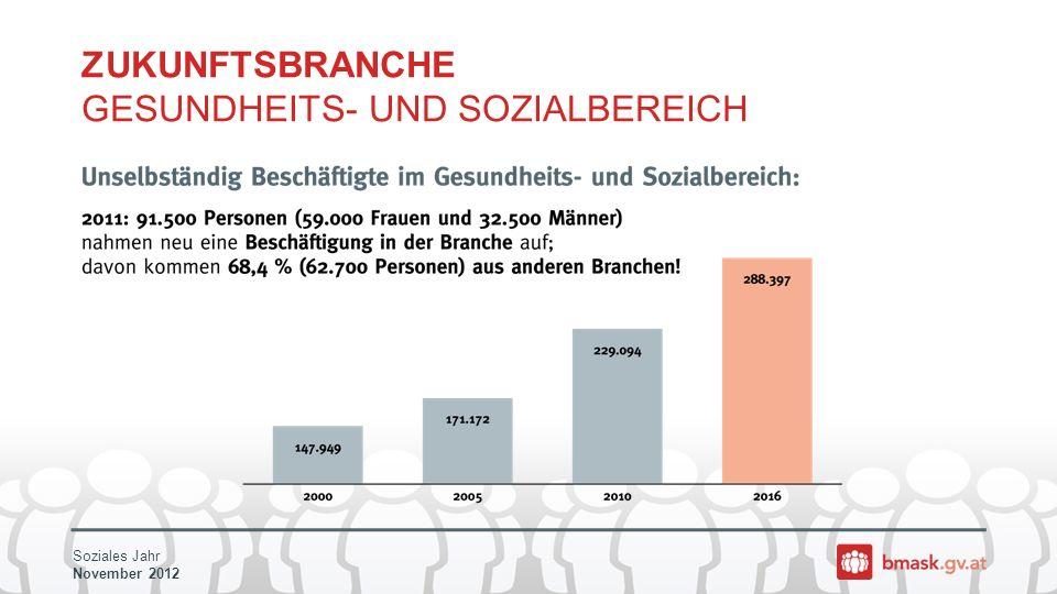 Soziales Jahr November 2012 ZUKUNFTSBRANCHE GESUNDHEITS- UND SOZIALBEREICH