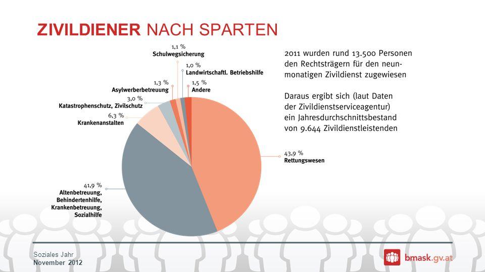 Soziales Jahr November 2012 ZIVILDIENER NACH SPARTEN
