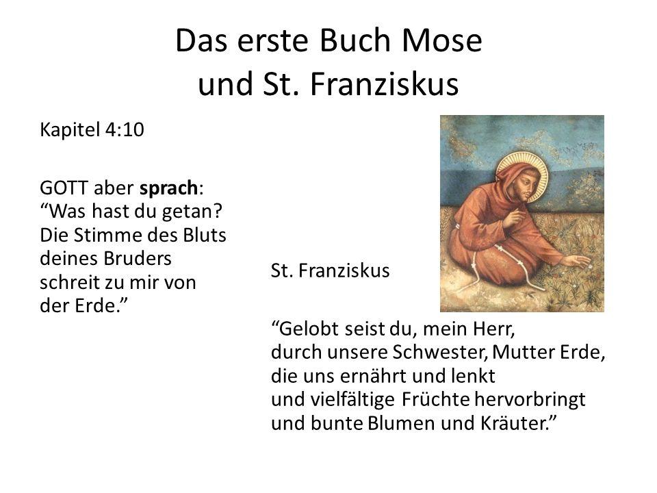 Das erste Buch Mose und St. Franziskus Kapitel 4:10 GOTT aber sprach: Was hast du getan.