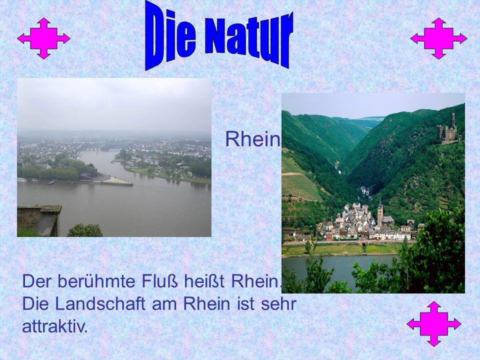 Der berühmte Fluß heißt Rhein. Die Landschaft am Rhein ist sehr attraktiv. Rhein