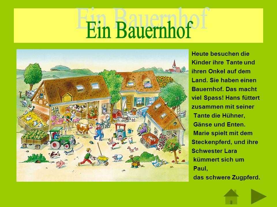 – Heute besuchen die – Kinder ihre Tante und – ihren Onkel auf dem – Land. Sie haben einen – Bauernhof. Das macht – viel Spass! Hans füttert – zusamme
