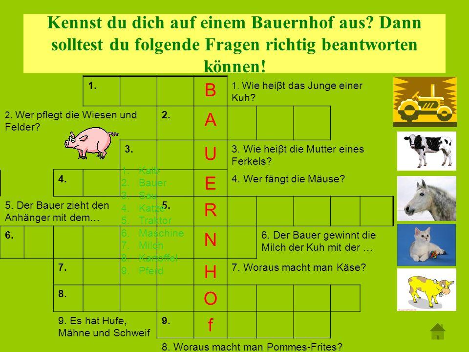Kennst du dich auf einem Bauernhof aus? Dann solltest du folgende Fragen richtig beantworten können! 1. B 1. Wie heiβt das Junge einer Kuh? 2. Wer pfl