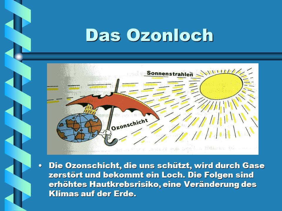 Das Ozonloch Die Ozonschicht, die uns schützt, wird durch Gase zerstört und bekommt ein Loch. Die Folgen sind erhöhtes Hautkrebsrisiko, eine Veränderu