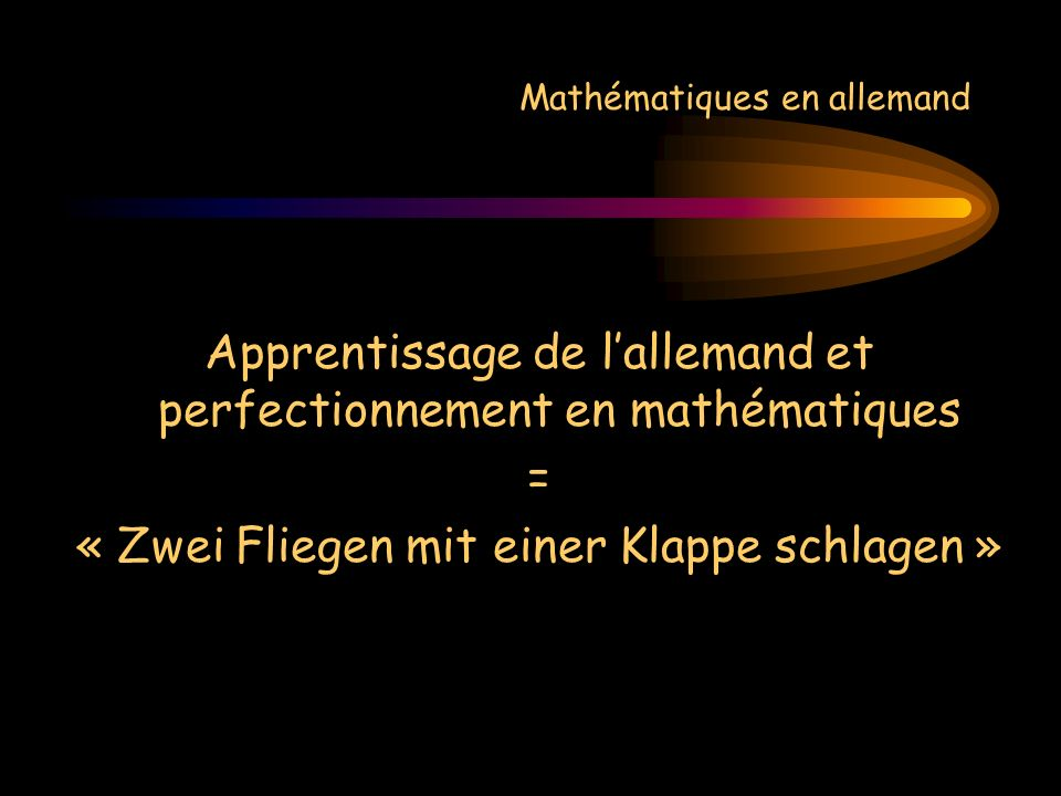 Mathématiques en allemand Apprentissage de lallemand et perfectionnement en mathématiques = « Zwei Fliegen mit einer Klappe schlagen »