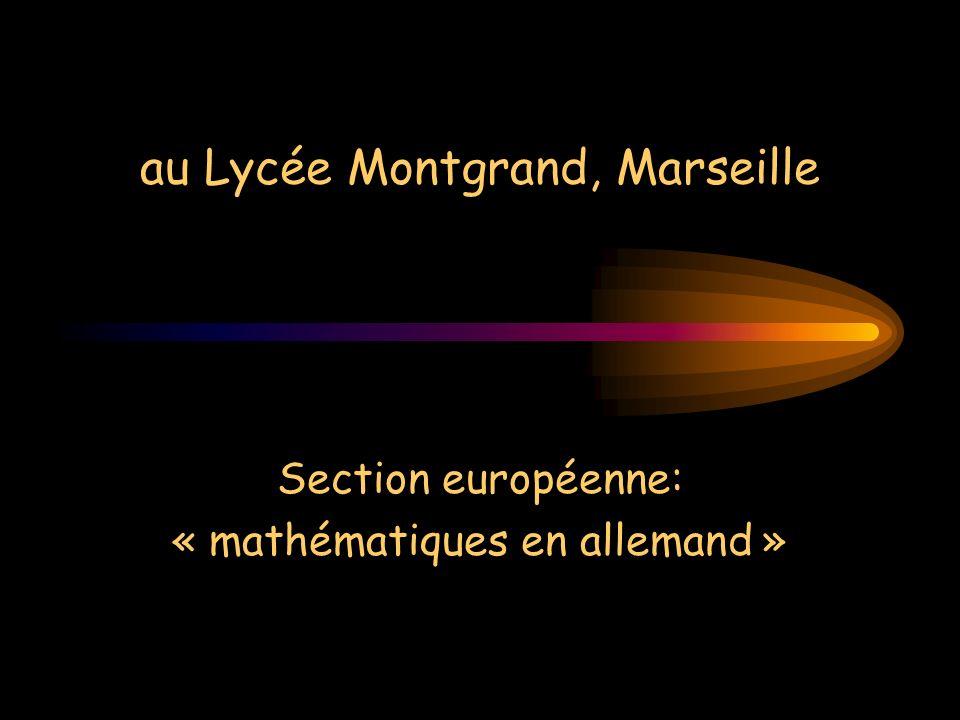 Section européenne: « mathématiques en allemand »