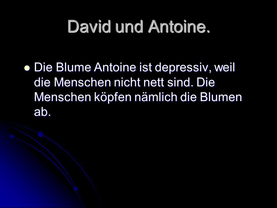 David und Antoine. Die Blume Antoine ist depressiv, weil die Menschen nicht nett sind.