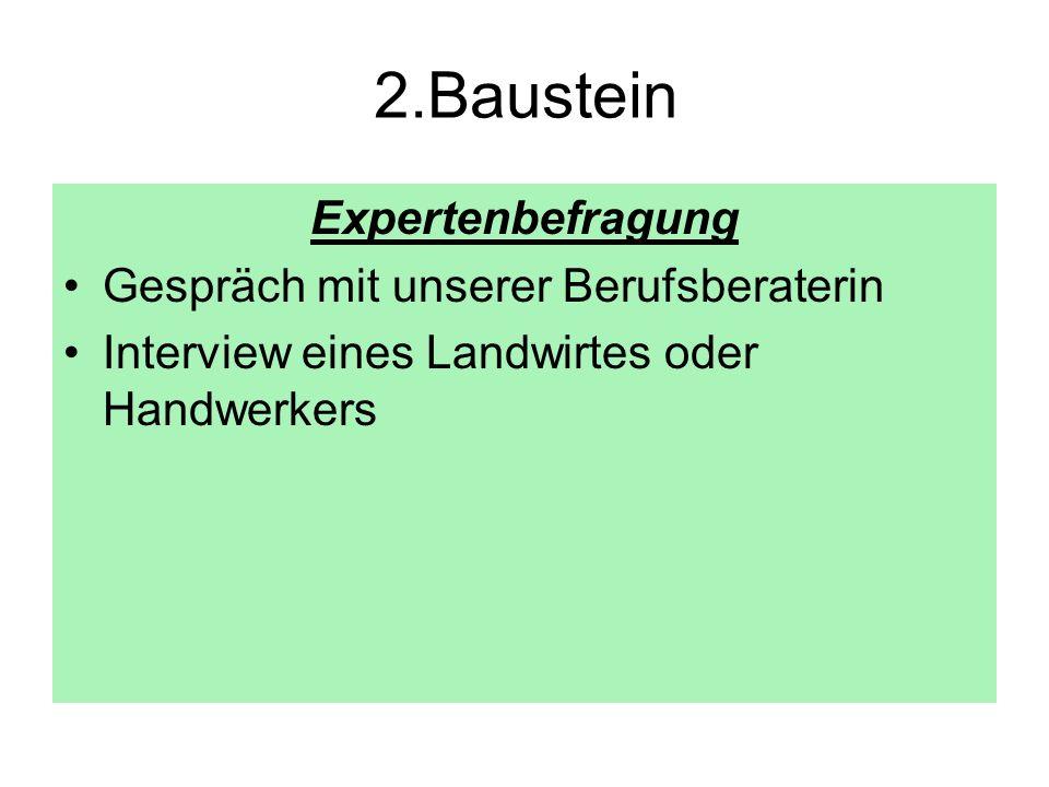 2.Baustein Expertenbefragung Gespräch mit unserer Berufsberaterin Interview eines Landwirtes oder Handwerkers