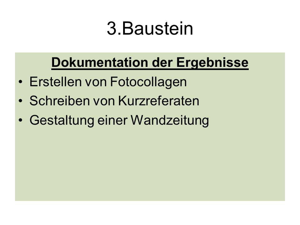 3.Baustein Dokumentation der Ergebnisse Erstellen von Fotocollagen Schreiben von Kurzreferaten Gestaltung einer Wandzeitung