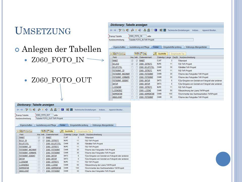 U MSETZUNG Anlegen der Tabellen Z060_FOTO_IN Z060_FOTO_OUT