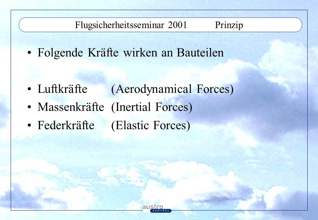 Flugsicherheitsseminar 2001Prinzip Folgende Kräfte wirken an Bauteilen Luftkräfte(Aerodynamical Forces) Massenkräfte(Inertial Forces) Federkräfte(Elas