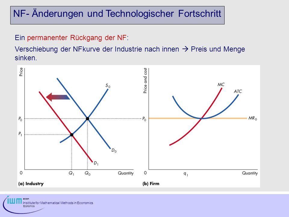 Institute for Mathematical Methods in Economics Economics NF- Änderungen und Technologischer Fortschritt Ein permanenter Rückgang der NF: Verschiebung der NFkurve der Industrie nach innen Preis und Menge sinken.