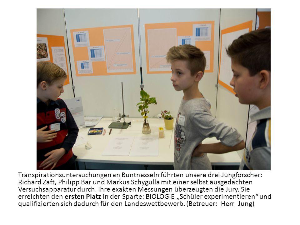 Transpirationsuntersuchungen an Buntnesseln führten unsere drei Jungforscher: Richard Zaft, Philipp Bär und Markus Schygulla mit einer selbst ausgedac