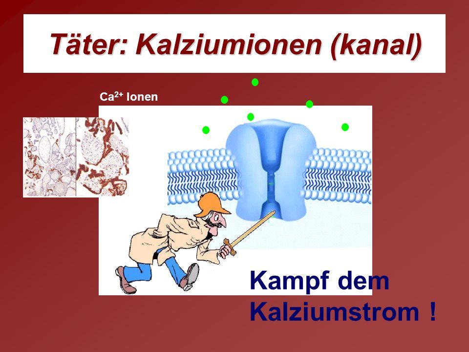 Täter: Kalziumionen (kanal) Kampf dem Kalziumstrom ! Ca 2+ Ionen