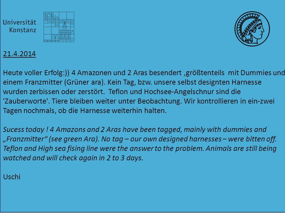 21.4.2014 Heute voller Erfolg:)) 4 Amazonen und 2 Aras besendert,größtenteils mit Dummies und einem Franzmitter (Grüner ara).
