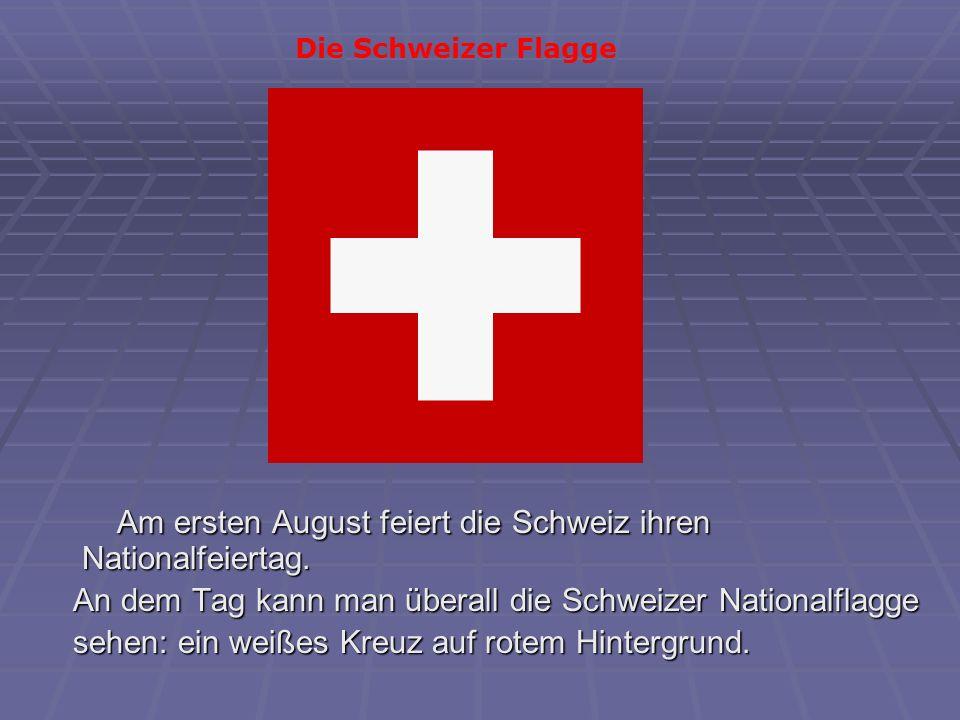 Unter den Schweizer Bergen gibt es etwa 400 Tunnels.