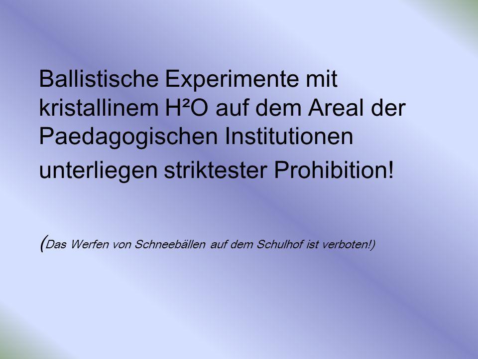 Ballistische Experimente mit kristallinem H²O auf dem Areal der Paedagogischen Institutionen unterliegen striktester Prohibition! ( Das Werfen von Sch