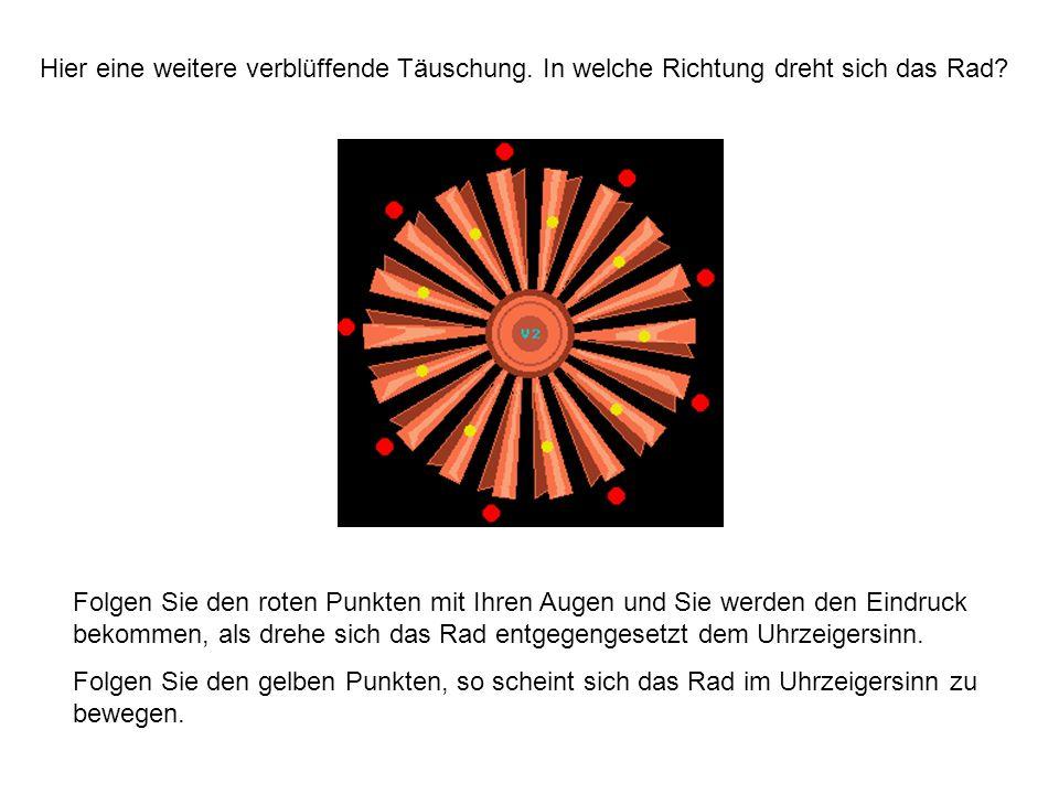 Hier eine weitere verblüffende Täuschung. In welche Richtung dreht sich das Rad? Folgen Sie den roten Punkten mit Ihren Augen und Sie werden den Eindr