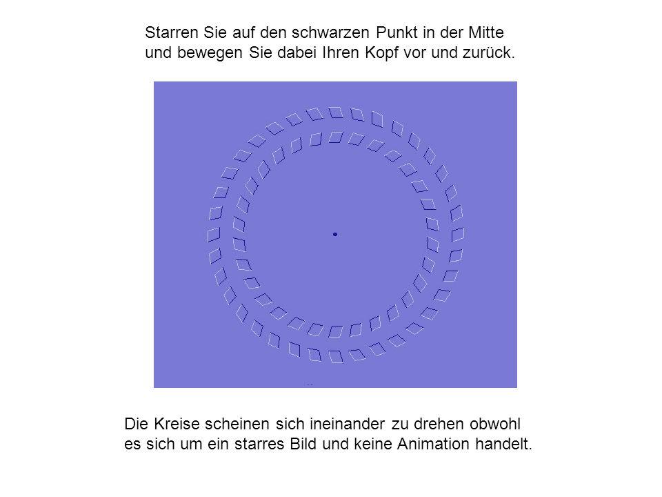 Starren Sie auf den schwarzen Punkt in der Mitte und bewegen Sie dabei Ihren Kopf vor und zurück. Die Kreise scheinen sich ineinander zu drehen obwohl