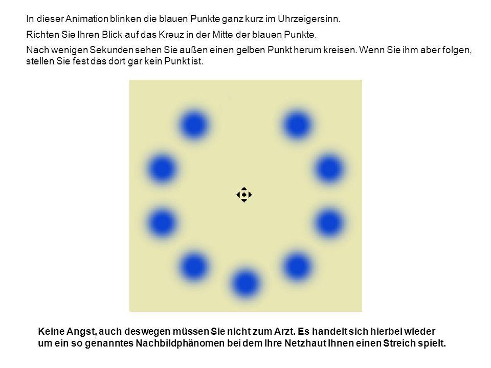 In dieser Animation blinken die blauen Punkte ganz kurz im Uhrzeigersinn. Richten Sie Ihren Blick auf das Kreuz in der Mitte der blauen Punkte. Nach w