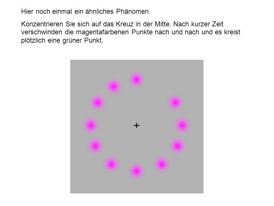 Hier noch einmal ein ähnliches Phänomen. Konzentrieren Sie sich auf das Kreuz in der Mitte. Nach kurzer Zeit verschwinden die magentafarbenen Punkte n